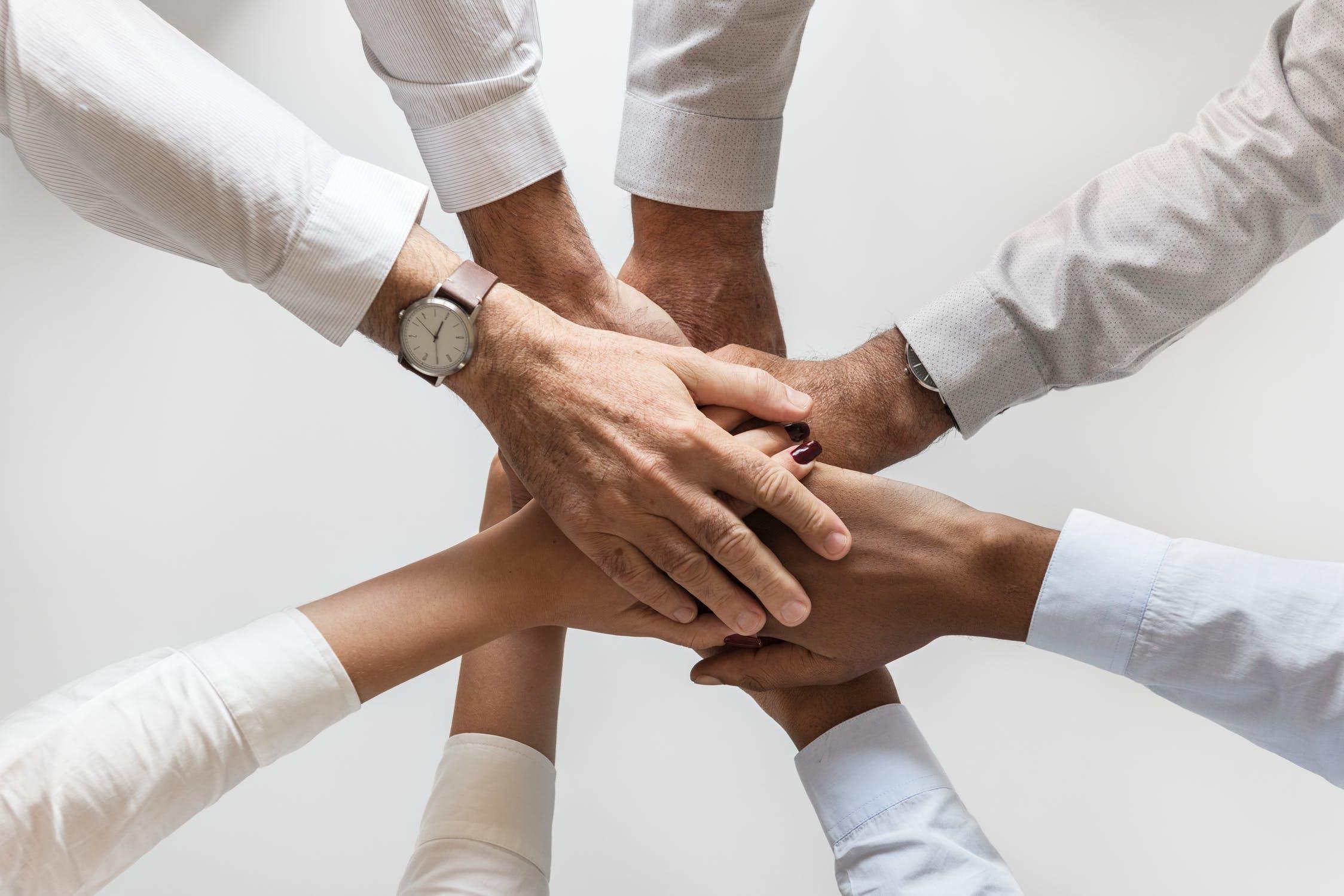 career, risk management, anti-fraud, investigations, cri group